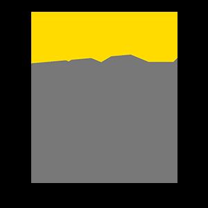 EY - Ihr Ansprechpartner für Digitalisierung