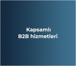 Kapsamlı B2B hizmetleri